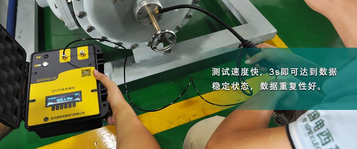 国电西高-江苏SF6气体检漏仪2